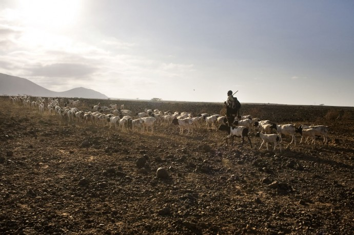 A herder leaves the village searching for water  - © Giulio Napolitano