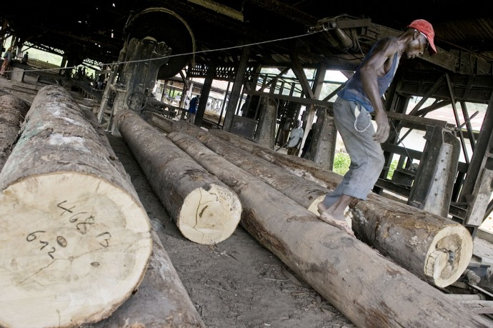Agrifor Sawmill, workers during their duties, Lemba, North of Boma, Bas-Congo  - © Giulio Napolitano