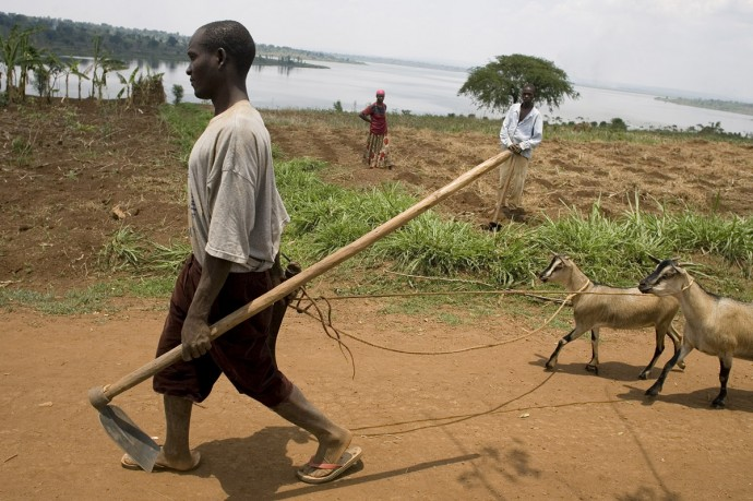 Everyday life along Lake Sake, 120 Km southeast of Kigali  - © Giulio Napolitano