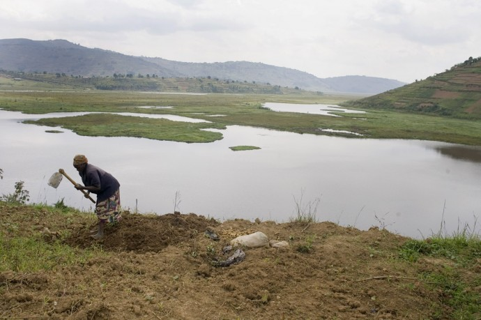 Rugezi where marshlands have been rehabilitated  - © Giulio Napolitano