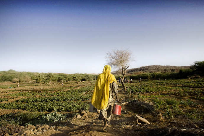 Watering the field, Kirari, Niger  - © Giulio Napolitano