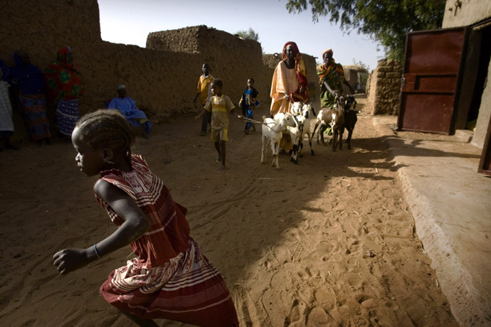 Distribution of goats under FAO-EU funded Programme, Koutki, Niger - © Giulio Napolitano
